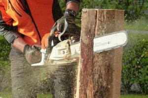 Chainsaw Personal Protective Equipment